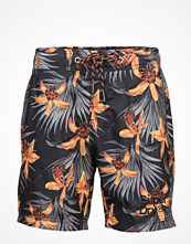 Badkläder - Superdry Vacation Paradise Swim Short