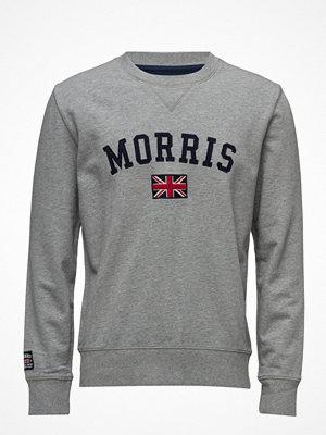 Tröjor & cardigans - Morris Brown Sweatshirt