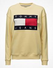 Tommy Jeans Tjw 90s Sweatshirt L/S 3