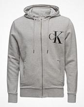 Street & luvtröjor - Calvin Klein Jeans Haro 2 True Icon Hoo