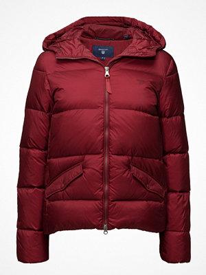 Gant Classic Down Jacket