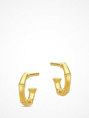 Julie Sandlau smycke Bamboo Earring