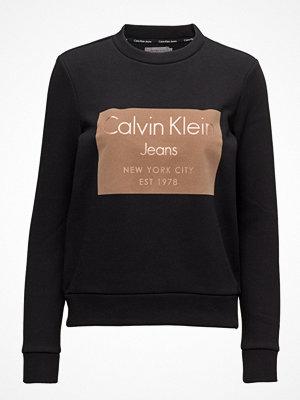 Calvin Klein Jeans Hansi Cn Hwk L/S, 50