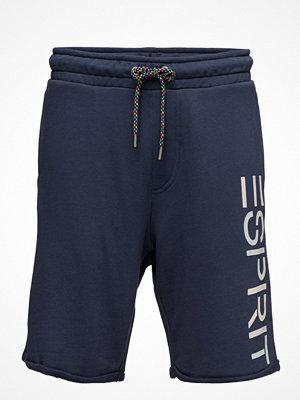 Shorts & kortbyxor - Esprit Casual Shorts Knitted