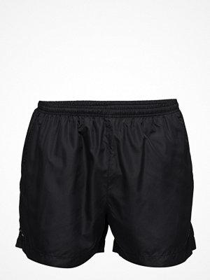 Sportkläder - Newline Base Trail Shorts
