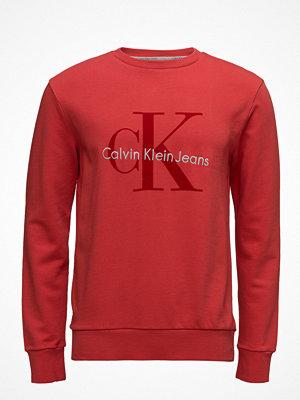 Tröjor & cardigans - Calvin Klein Jeans Haws 6 Gmd Cn Hknit,