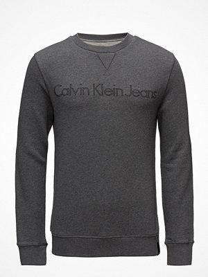 Calvin Klein Jeans Harpo 1 Slim Cn Hknit Ls