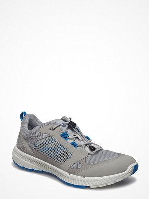 Sneakers & streetskor - Ecco Terracruise Ii