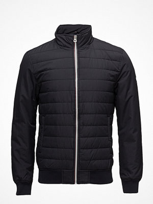 Superdry International Padded Jacket