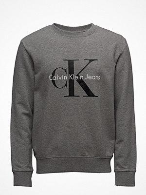 Calvin Klein Jeans Crewneck Hwk True Icon
