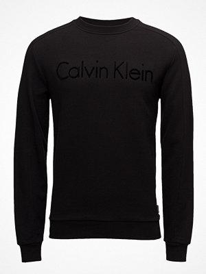 Calvin Klein Kasma_2 French Terry