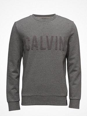Calvin Klein Jeans Hapexo Cn Hknit Ls,