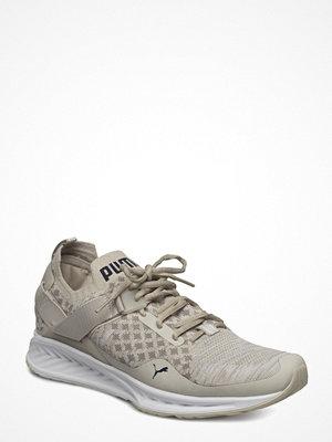 Sneakers & streetskor - PUMA SPORT Ignite Evoknit Lo Pavement