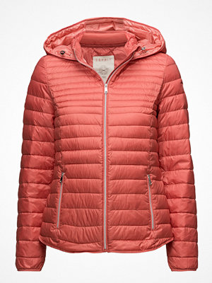Esprit Casual Jackets Outdoor Woven