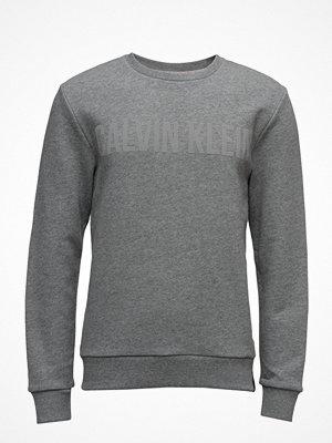 Calvin Klein Jeans Habas Cn Hknit L/S,