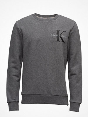 Calvin Klein Jeans Haxo 4 Cn Hknit Ls,