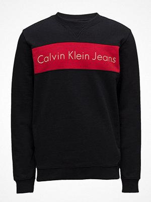 Calvin Klein Jeans Hayo 1 Regular Cn Hknits Ls