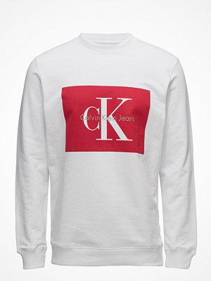 Calvin Klein Jeans Hotoro Regular Cn Hk