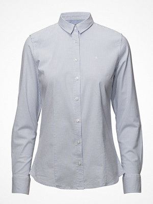 Park Lane Classic Oxford Shirt