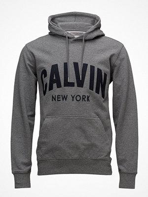 Street & luvtröjor - Calvin Klein Jeans Hikos 2 Regular Hd Popover Ls