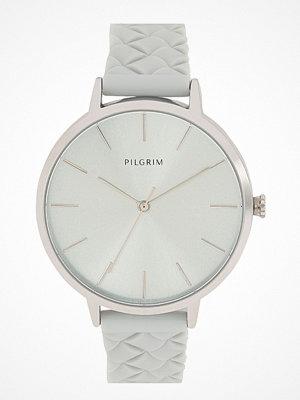 Klockor - Pilgrim Aster