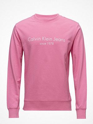 Calvin Klein Jeans Hamato 1 Regular Cn Hknit Ls