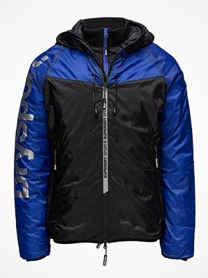 Dunjackor - Superdry Cold Weather Chevron Sportshell