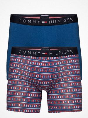 Tommy Hilfiger 2p Boxer Brief Mosai