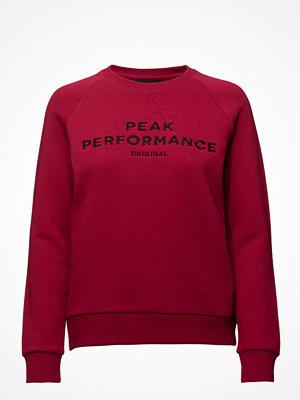 Peak Performance Training W Logo Cr