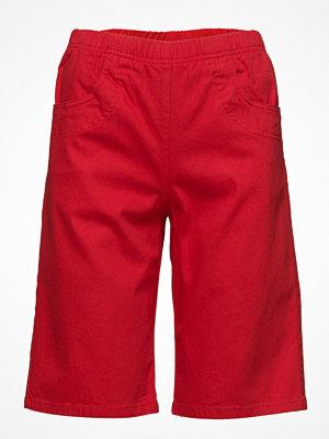 Signature Casual Shorts