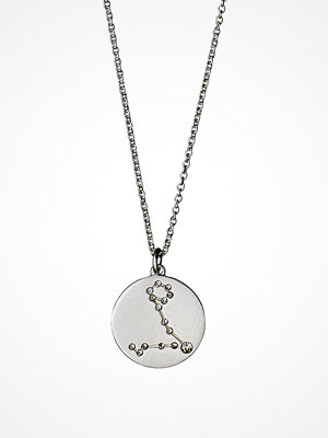 Pilgrim smycke Pisces 19/02 - 20/03