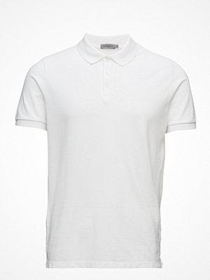 Pikétröjor - Calvin Klein Jeans Paul Nos Polo Ss