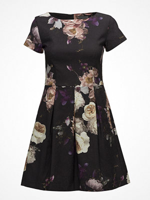 Sand Mega Rose Cotton - Norma Dress