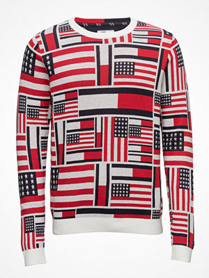 Tommy Jeans Thdm Iconic Cn Sweater L/S 14