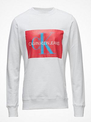Calvin Klein Jeans Monogram Box Logo Sweatshirt
