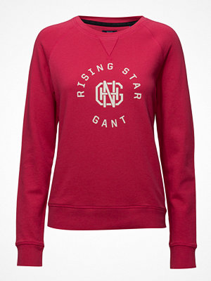 Gant Op2.Gant Rising Star C-Neck Sweat