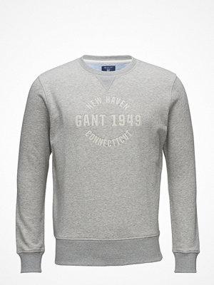Tröjor & cardigans - Gant Op2. Graphic Emb C-Neck Sweat