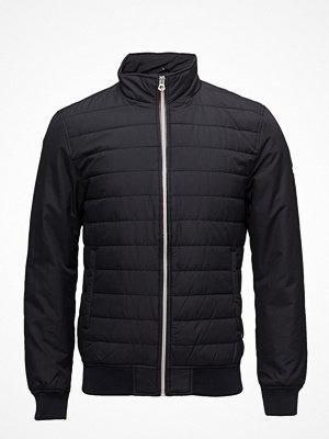Dunjackor - Superdry International Padded Jacket