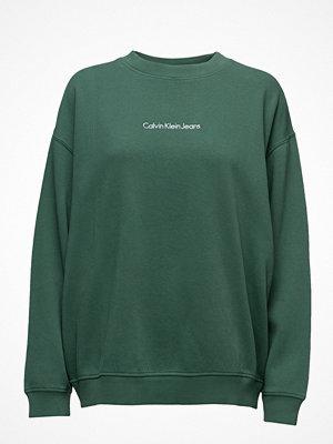 Calvin Klein Jeans Hilary Cn Hwk L/S