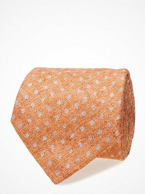 Slipsar - Morris Salina Tie