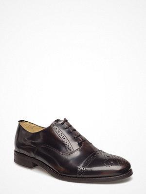 Shoe The Bear Matthew P