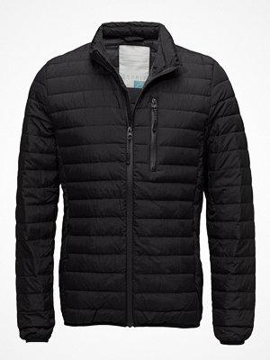 Dunjackor - Esprit Casual Jackets Outdoor Woven