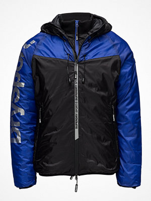 Superdry Cold Weather Chevron Sportshell