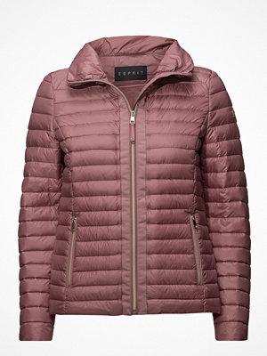 Dunjackor - ESPRIT Collection Jackets Outdoor Woven