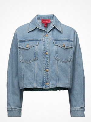 Hilfiger Collection Denim Hybrid Jkt