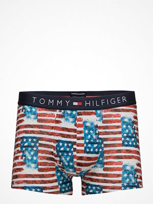 Kalsonger - Tommy Hilfiger Icon Trunk Photo Americana