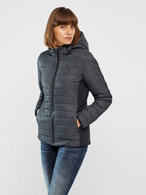 Hummel Fashion Vinterjacka