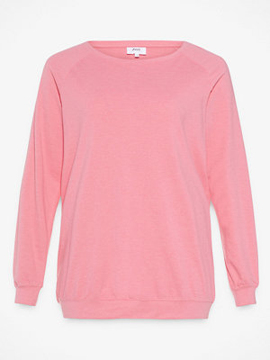 Zizzi Stockton sweatshirt