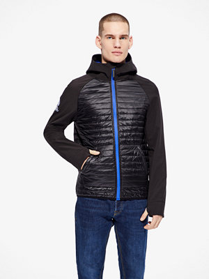 Superdry Softshell Mountaineer jacka