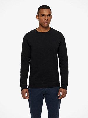 Tröjor & cardigans - Solid Garon sweatshirt